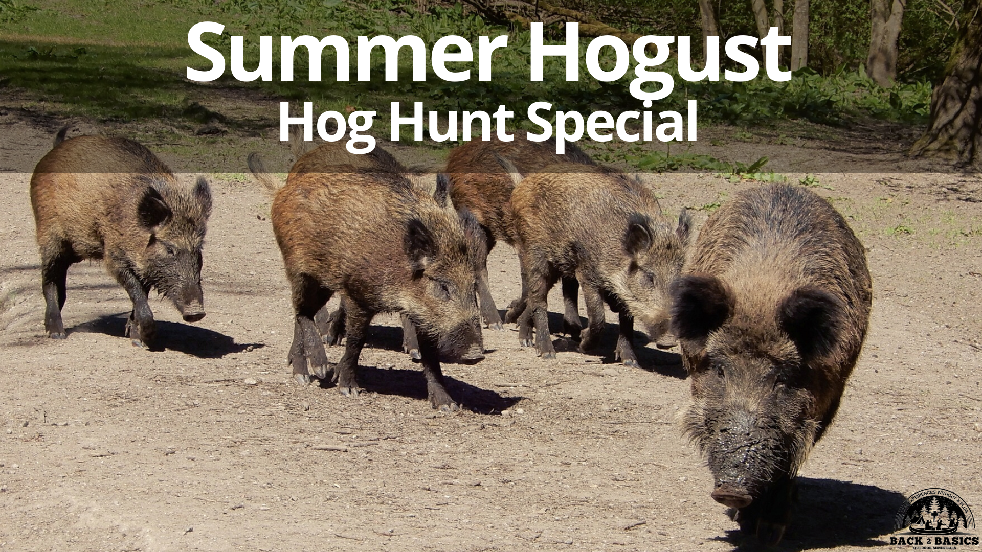 Summer Hogust Hunt Special, half day hog hunt central florida, back2basics outdoor ministries