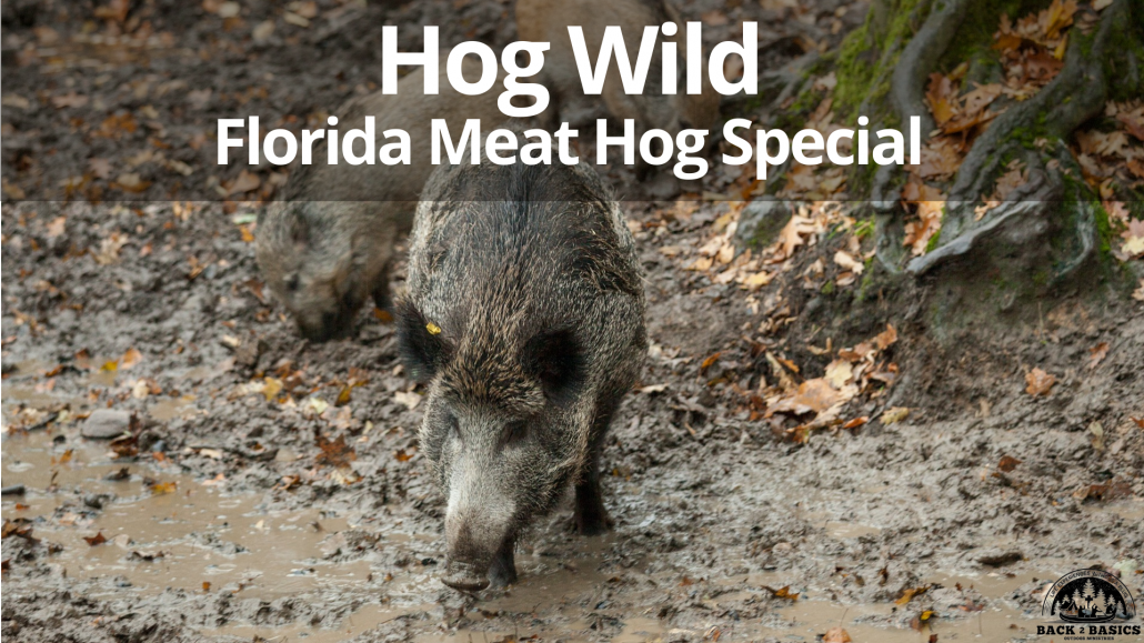 hog wild, florida meat hog special, back2basics outdoor ministries